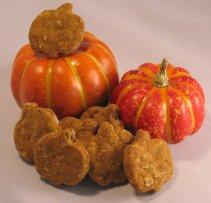 pumpkin recipes for pet treats