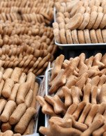 Trays of dog biscuits made in a dog bakery business