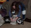 Ahh!  A dog's life!